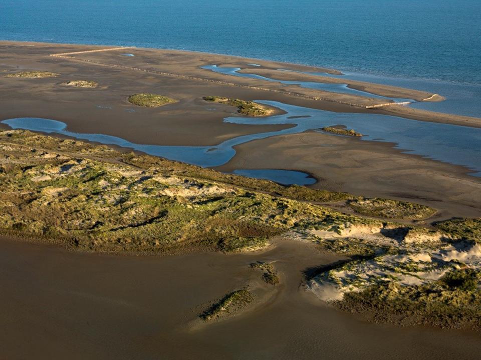 Etangs et marais des salins de Camargue - Dunes de Beauduc
