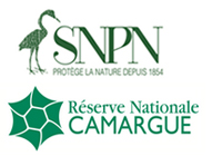 Réserve nationale naturelle de Camargue