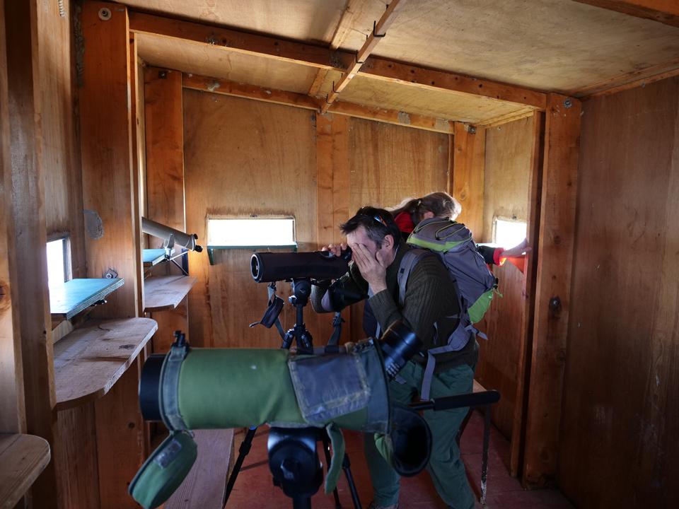 Journée mondiale des Zones Humides - Camargue - Tour du Valat