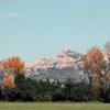 Sortie nature Alpilles - Les Alpilles - Parc naturel régional des Alpilles